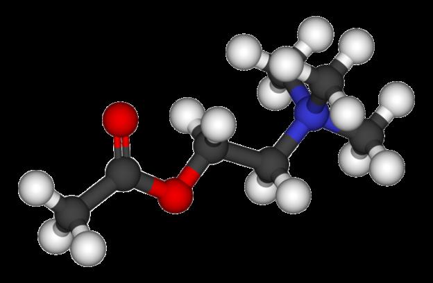 Acetylcholine 3D balls