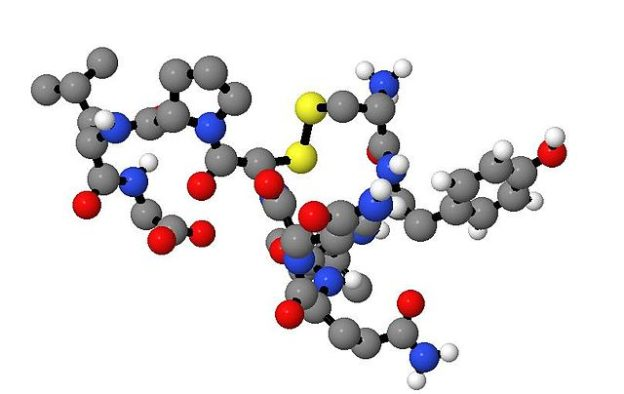 Adh-Vasopressin-SIADH