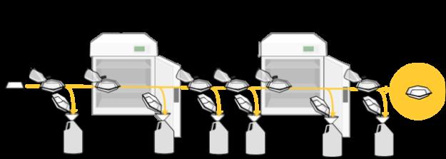 Western Blot binding DNA
