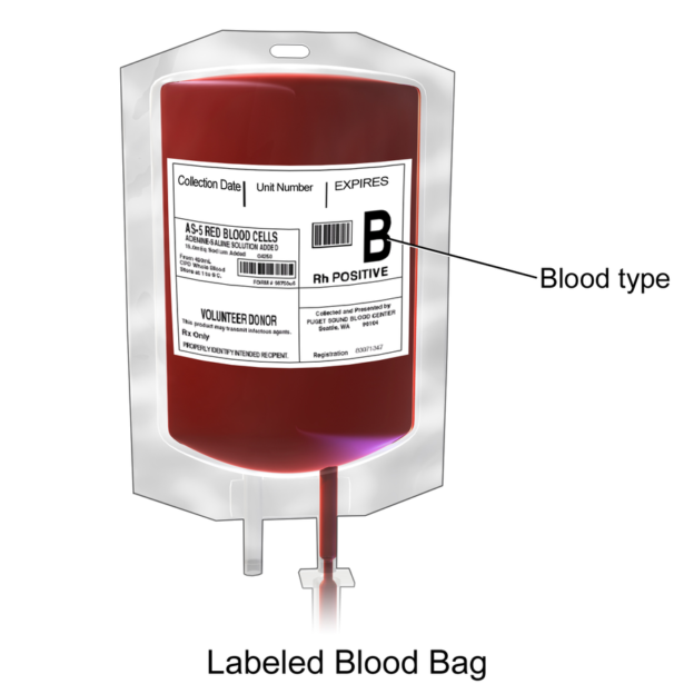 blood bag for blood transfusion