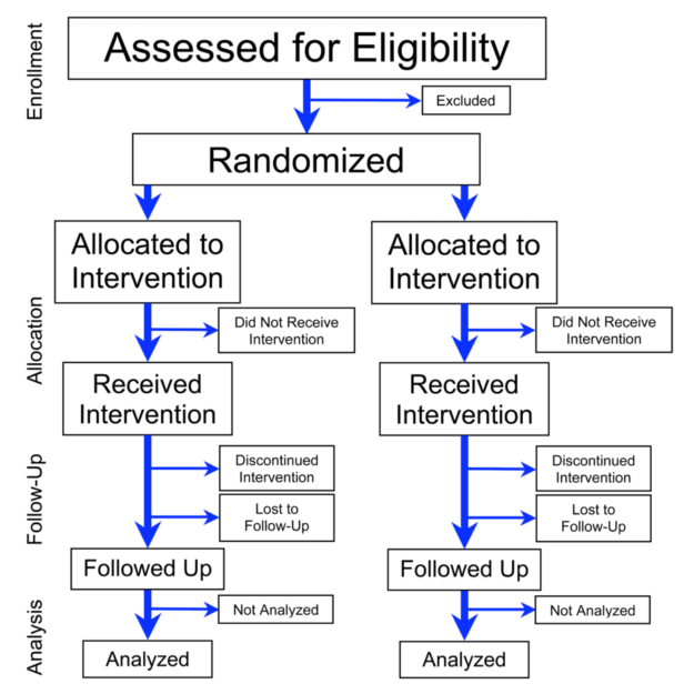 flowchart of phases of parallel randomized trial