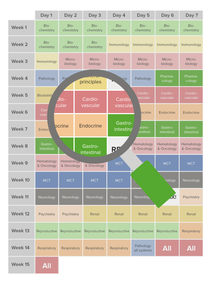 99 Day Study Schedule USMLE Step 1 Overview