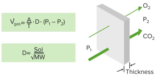 caclulating-diffusion