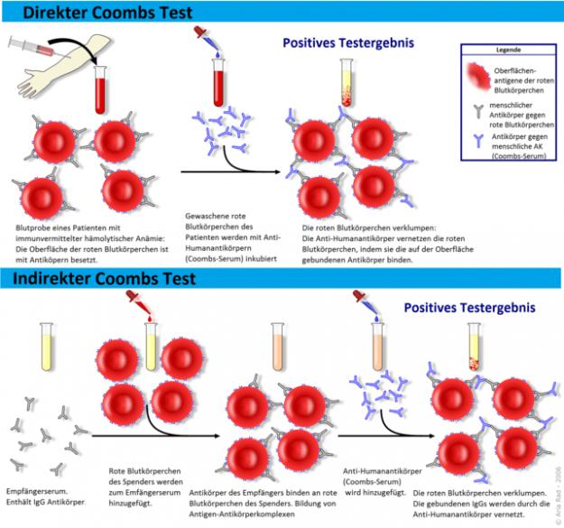Coombs-test scheme