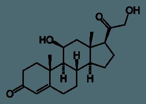 Corticosterone molecule