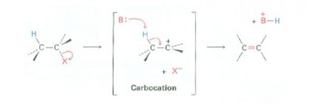 E1-Mechanism