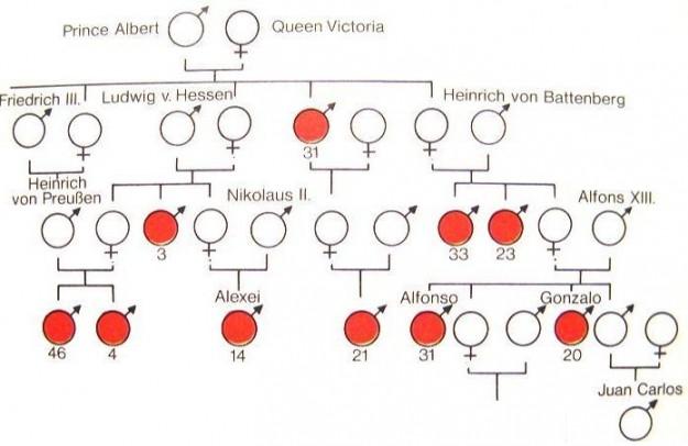 Inheritance-of-Hemophilia