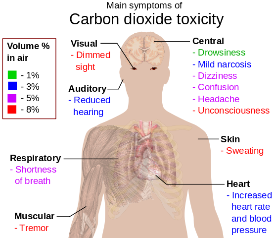 Main symptoms of carbon dioxide toxicity