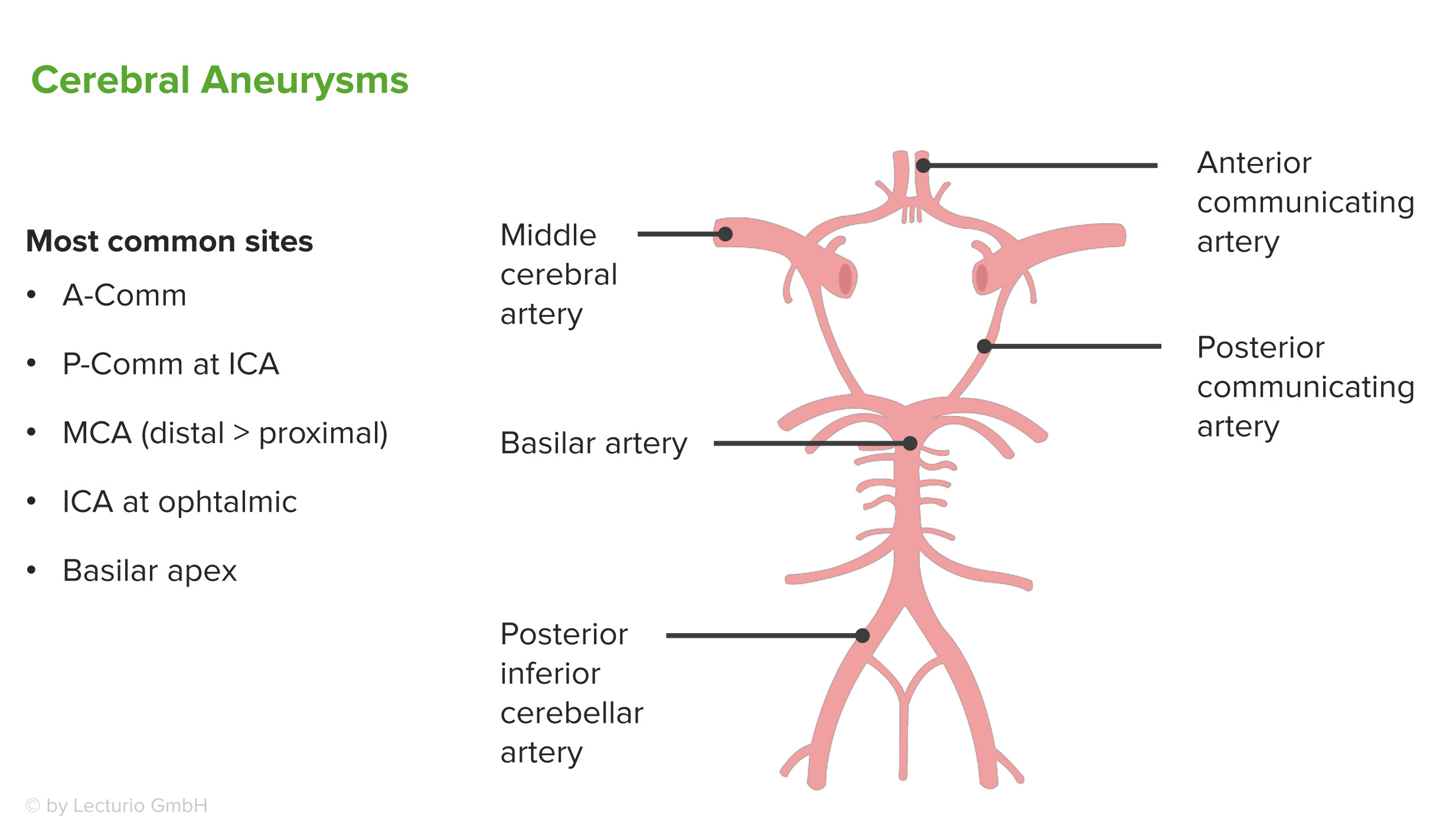 diagnosis and treatment of brain aneurysm Aneurysm: treatments inroduction because some types of aneurysms can be life-threatening, prompt diagnosis and treatment of the condition is key to maintaining.