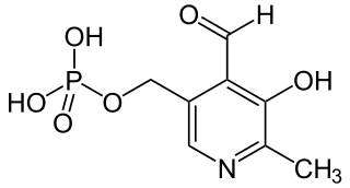 Structure of pyridoxal-phosphate (PLP)