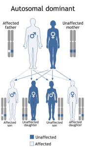 autosomal dominant pattern of inheritance