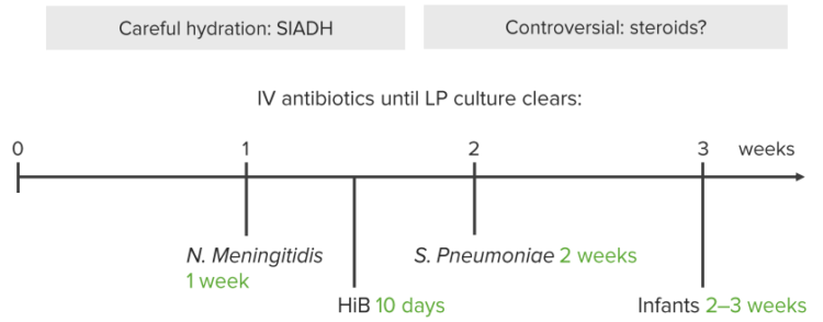 bacterial-meningitis-treatment