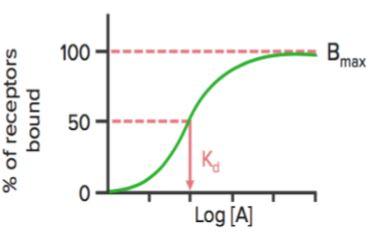 binding curves