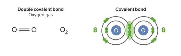 Double covalent bond