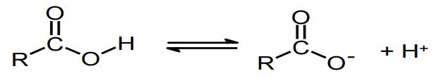 carboxyl-acids