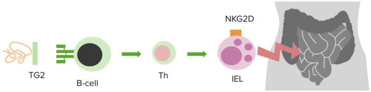celiac-disease2