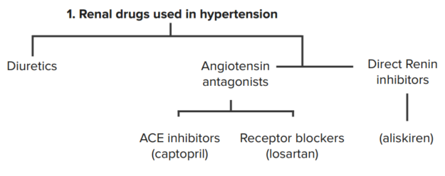 drugs-in-hypertension-1