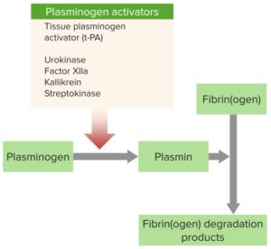 fibrinolysis thrombosis