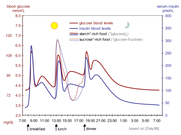 idealized curves of human blood glucose and insulin concentrations