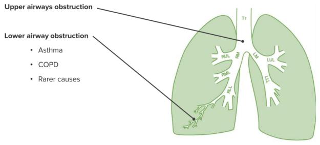 lung diseases-range