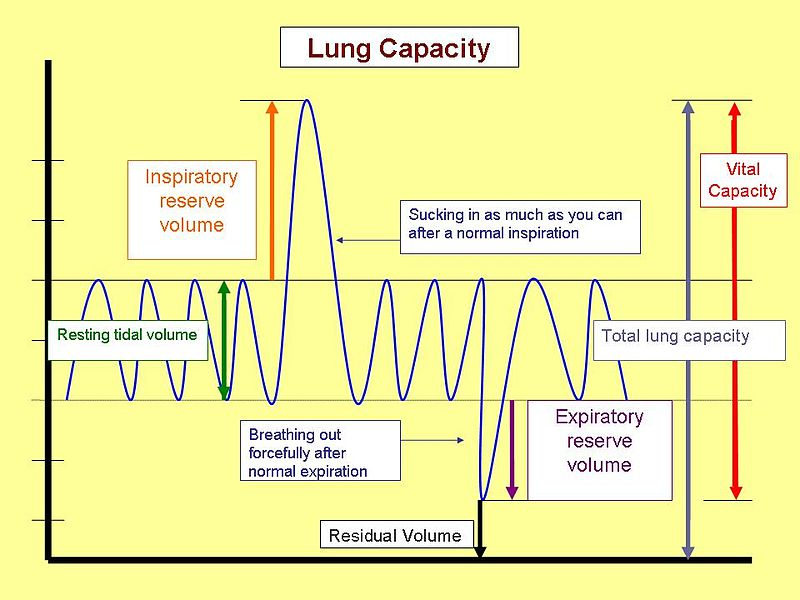 lungcapacity