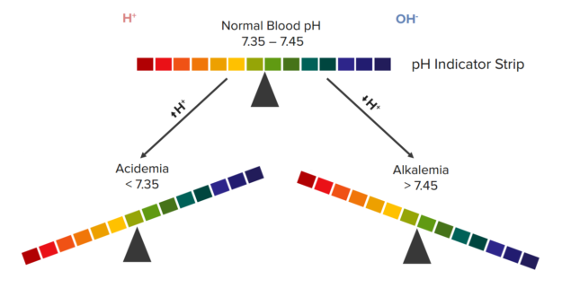 normal-blood-ph