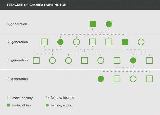 pedigree of chorea huntington