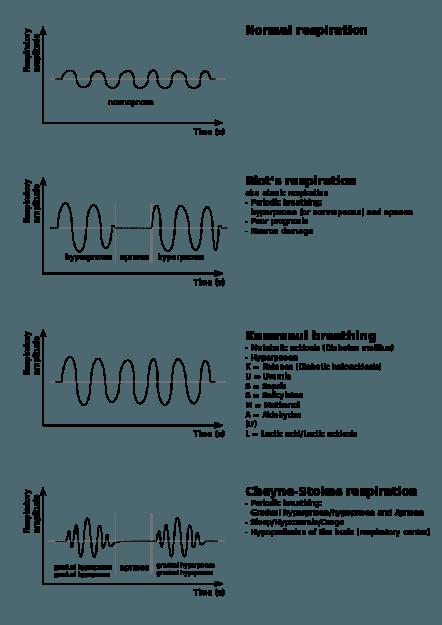 respiratory abnormalities