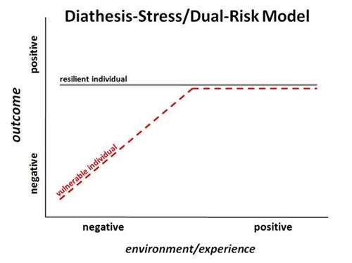 vulnerability-stress-model