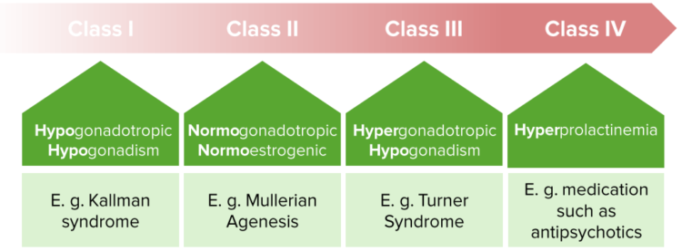 who-classification